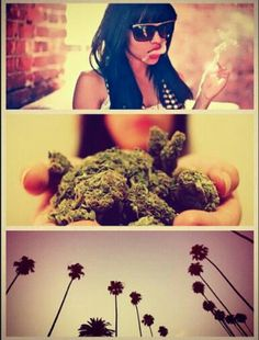 Women Weed & Weather