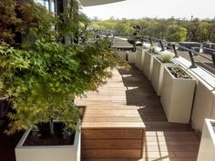 Impressions - Pflanzplan Planer, Deck, Outdoor Decor, Home Decor, Rooftop Terrace, House, Paradise, Friends, City