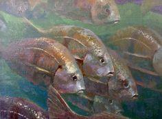"""Schooling Sargos"" underwater ocean painting by fine artist David Gallup of saltwater wildlife series of Channel Islands Paintings I Love, Animal Paintings, Ocean Paintings, Oil Paintings, Underwater Painting, Hamptons Decor, Coastal Art, Fish Art, Wildlife Art"