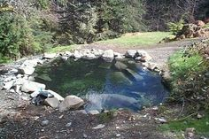 Olympic Hot Springs Trail