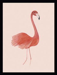 G&C Gallery Flamingo Bild #Tropical #Wohnen #Wandbild #Dekoration #Galaxus