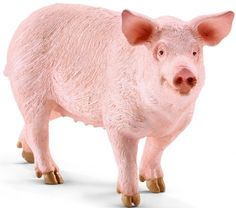 Pig Schleich - bought