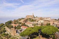 Montalcino is a hilltown in Tuscany, Italy. It is famous for its Brunello di Montalcino wine.