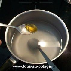 oïdium et mildiou : savon noir mou et bicarbonate de soude