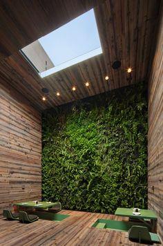 Living wall inside Tori Tori Restaurant, Mexico City