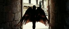 I'm a wing stealer. I take them from the birds, the butterflies, and in times of war, from the dragons.
