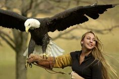The Beaty and the beast, the bald eagle..