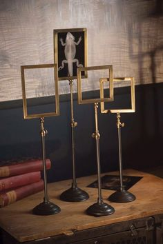 brass frame stands -- LOVE for displaying photos in different way!