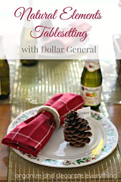 Natural Elements Table Setting for Thanksgiving or Christmas with @mydollargeneral #dollargeneral #tablesetting #ad