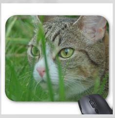 Daxter the Cat Mousepad - Hidden Kitten - Mouse Pad