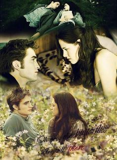 #TwilightSaga #Eclipse - Edward & Bella