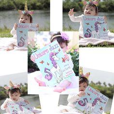 Unicorn Books, Unicorn Art, Picture Story, Children's Picture Books, Flap Jack, Unicorn And Fairies, Kids Book Series, Unicorn Pictures, Colorful Animals