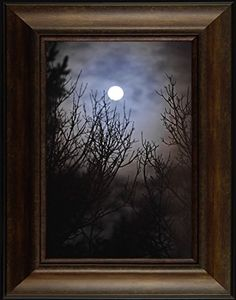 Night Light By Todd Thunstedt 26x20 Moon Moonscape Branches Lunar Solar Eclipse Palm Trees Ocean Sea Night Clouds Nautical Heavens Midnight Twilight Dusk Nightfall Framed Art Print Wall Décor Picture ThunderMark Art and Graphics http://www.amazon.com/dp/B014BVH2UO/ref=cm_sw_r_pi_dp_nD64vb1PK6YD8