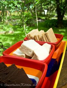 Homemade S'Mores that are HEALTHY and even GAPS-legal