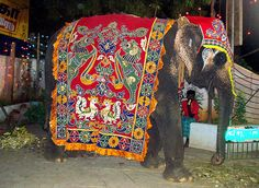 Decorated Elephant by Kamala L, via Flickr