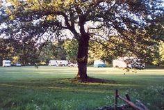 Camelot Caravan Park, Longtown, Carlisle, Cumbria, England, Camping. Travel. Explore. Outdoors. Holiday. Family Holiday.