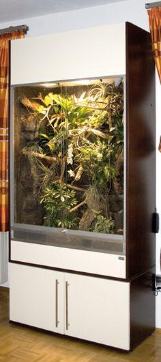 R03 rainforest terrarium in granite rock-Jungle-optics