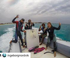 Må dykke nå igjen snart kjenner jeg. #reiseblogger #reisetips #reiseliv  #Repost @ingeborgnordvik with @repostapp  Herlige båtførere og dykkeleder!  #scubadiving #diving # dykking #capeverde #caboverde #kapverde #padi #ourlifeincapeverde #livetihavet #underwaterworld