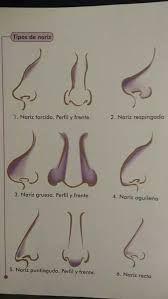 Resultado de imagen para corregir nariz aguileña con maquillaje