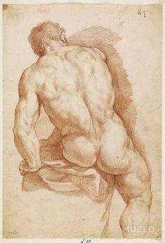 Figure Drawing Renaissance-Zeichnung im Stile Leonardo da Vinci. Male Figure Drawing, Figure Drawing Reference, Guy Drawing, Life Drawing, Painting & Drawing, Drawing Studies, Art Of Man, Anatomy Drawing, Michelangelo