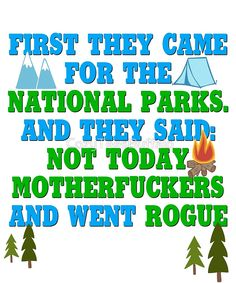 Rogue Ranger Alt Forest Rangers First They Came For The National Parks and They Said Not Today Motherfuckers and Went Rogue Vintage Varsity Distressed Funny Science March USA Protest Resist by CozyTeesBuffalo