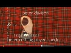 Scottish sock puppets + Sherlock + Doctor Who.... Couldn't stop laughing.  THIS WAS OBVIOUSLY MADE JUST FOR ME. :P