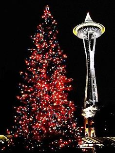 seattle winter lights pedicab tour washington state holiday activities family activities christmas in - Christmas Activities In Seattle