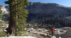 Backpack into the heart of Sequoia National Park to the beautiful snow-melted Pear Lake in Tokopah Valley.