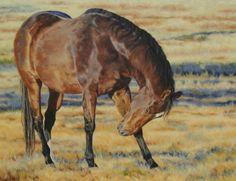 Horse painting by Kate Jenvey