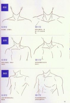 Human Figure Drawing Reference Neck and shoulders artist reference anatomy drawing tutorial. Drawing Skills, Drawing Lessons, Drawing Techniques, Drawing Tips, Drawing Ideas, Sketch Ideas, Sketch Drawing, Human Figure Drawing, Figure Drawing Reference