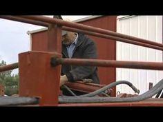 Monsanto A Documentary on GMO a must watch