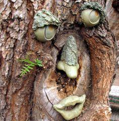 Garden art–we love our tree face =)