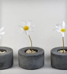 Mini Round Concrete Pot - Set of 3 | This listing is for three mini pots. Great for succulents. Fel... | Pots & Planters