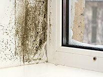 mietminderung musterbrief kostenlose vorlage zur mietminderung mietminderung pinterest. Black Bedroom Furniture Sets. Home Design Ideas