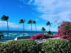 ハワイは自然がジム!