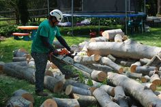 Willow Tree & Landscaping Services experienced and knowledgeable ISA Certified Arborists would be happy to provide professional evaluations and free estimates on all of your needs at your home of tree service Montgomery County. Our tree services cover everything from removals to health treatments.