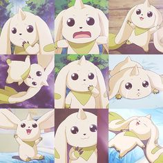 My favorite digimon from Season 3, Terriermon!