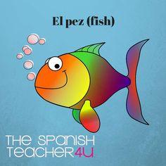El pez. The fish