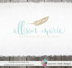 Premade Photography Logo   Hand drawn Gold Feather by autumnscreek, $40.00
