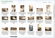 Genea-Musings: My Ancestor Family File Folders and File Naming Convention