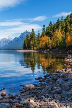 Fall at Lake McDonald Glacier National Park Montana // JoLoLog Landscape Photos, Landscape Paintings, Landscape Photography, Nature Photography, Photography Tips, Night Photography, Amazing Photography, Beautiful World, Beautiful Places