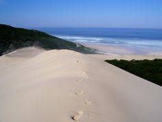 beachview+port+elizabeth+sand+dunes