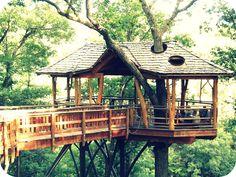 Tree House | Flickr - Photo Sharing!
