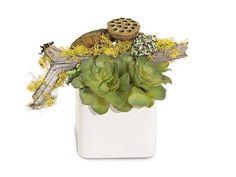 John Richard Crisp Succulents Floral Arrangement