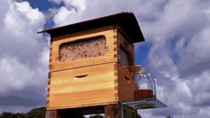 New Beehive Lets You Harvest Honey Automatically Without Disturbing the Bees