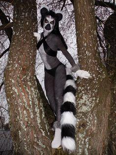 Ring-tailed lemur Julie by *Kaksoset89 on deviantART