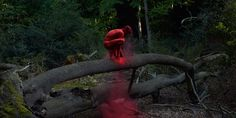 Photographer Bertil Nilsson has created a breathtaking series featuring nude dancers alone in sweeping, natural landscapes. Twirling, pirouetting and balancing atop fallen trees and mountain peeks, the performers stand out in the stark contrasts of man and Mother Nature.
