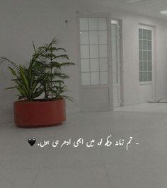Longing Quotes, Planter Pots, Urdu Quotes, Poetry, Peace, Deep, Writing, Home Decor, Decoration Home