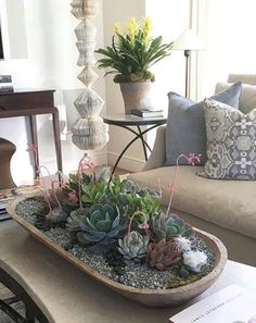 Checkout these succulent decoration ideas you can easily implement. Over thirthy unbelievable succulent decoration ideas for your home. Blooming Succulents, Types Of Succulents, Succulents In Containers, Cacti And Succulents, Planting Succulents, Interior Design Plants, Plant Design, Diy Interior, Garden Design