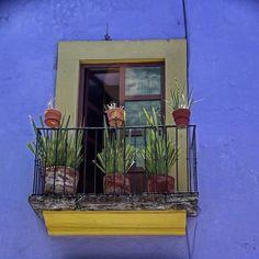 #portasejanelas #mexico by mimicerbon via Instagram